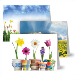 Spring note cards