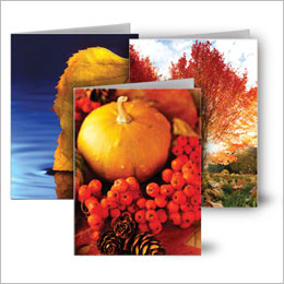 Autumn Note Cards